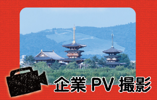 company-pv